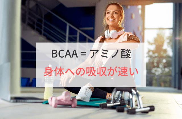 BCAAは吸収が速い